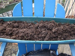 When recycling soil, make sure to break it up and fluff so new roots have room to grow.